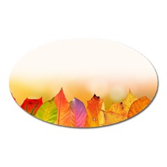 Autumn Leaves Colorful Fall Foliage Oval Magnet by BangZart