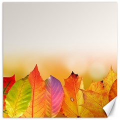 Autumn Leaves Colorful Fall Foliage Canvas 12  X 12   by BangZart