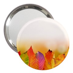 Autumn Leaves Colorful Fall Foliage 3  Handbag Mirrors by BangZart