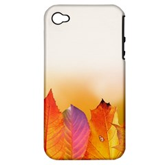 Autumn Leaves Colorful Fall Foliage Apple Iphone 4/4s Hardshell Case (pc+silicone) by BangZart