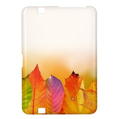 Autumn Leaves Colorful Fall Foliage Kindle Fire Hd 8 9  by BangZart