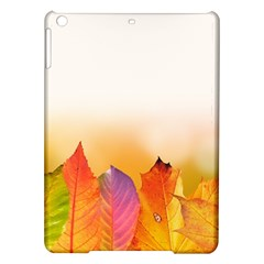 Autumn Leaves Colorful Fall Foliage Ipad Air Hardshell Cases by BangZart