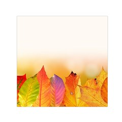 Autumn Leaves Colorful Fall Foliage Small Satin Scarf (square) by BangZart