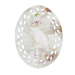 Orchids Flowers White Background Ornament (oval Filigree) by BangZart
