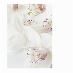 Orchids Flowers White Background Large Garden Flag (two Sides) by BangZart