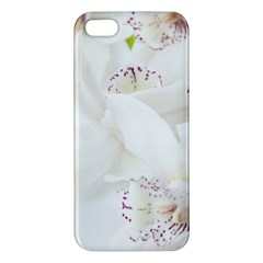 Orchids Flowers White Background Iphone 5s/ Se Premium Hardshell Case by BangZart