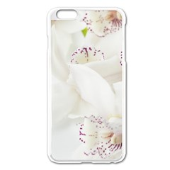 Orchids Flowers White Background Apple Iphone 6 Plus/6s Plus Enamel White Case by BangZart