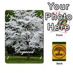 treeheim-deckA-x2 - Playing Cards 54 Designs