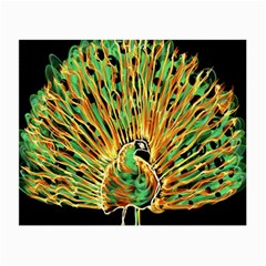 Unusual Peacock Drawn With Flame Lines Small Glasses Cloth by BangZart