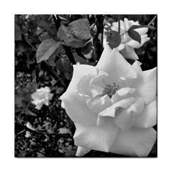 White Rose Black Back Ground Greenery ! Face Towel by CreatedByMeVictoriaB