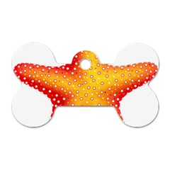 Starfish Dog Tag Bone (one Side) by BangZart
