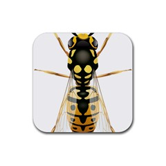 Wasp Rubber Coaster (square)  by BangZart