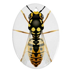 Wasp Oval Ornament (two Sides) by BangZart