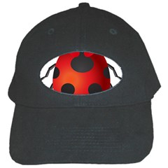 Ladybug Insects Black Cap by BangZart