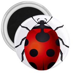 Ladybug Insects 3  Magnets by BangZart