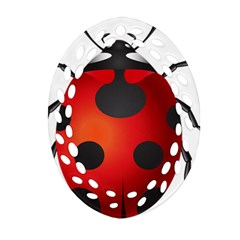 Ladybug Insects Oval Filigree Ornament (two Sides) by BangZart