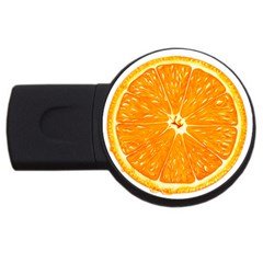 Orange Slice Usb Flash Drive Round (2 Gb) by BangZart