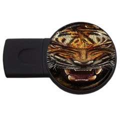 Tiger Face Usb Flash Drive Round (2 Gb) by BangZart