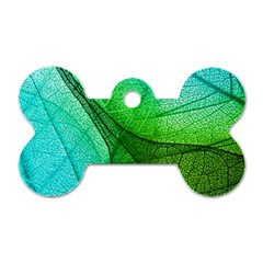 Sunlight Filtering Through Transparent Leaves Green Blue Dog Tag Bone (one Side) by BangZart