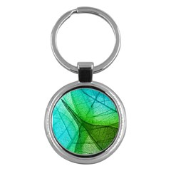 Sunlight Filtering Through Transparent Leaves Green Blue Key Chains (round)  by BangZart