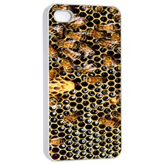 Queen Cup Honeycomb Honey Bee Apple Iphone 4/4s Seamless Case (white) by BangZart