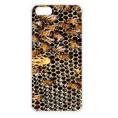 Queen Cup Honeycomb Honey Bee Apple Iphone 5 Seamless Case (white)