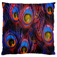 Pretty Peacock Feather Large Cushion Case (two Sides) by BangZart