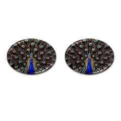 Peacock Cufflinks (oval) by BangZart