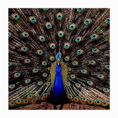 Peacock Medium Glasses Cloth (2 Side) by BangZart