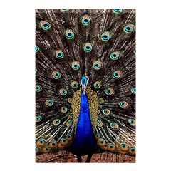 Peacock Shower Curtain 48  X 72  (small)  by BangZart