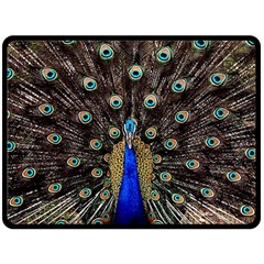 Peacock Double Sided Fleece Blanket (large)  by BangZart