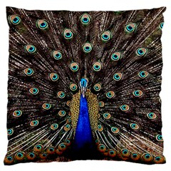 Peacock Large Flano Cushion Case (two Sides) by BangZart