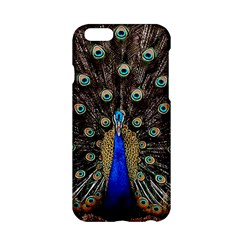 Peacock Apple Iphone 6/6s Hardshell Case by BangZart