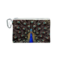 Peacock Canvas Cosmetic Bag (s) by BangZart