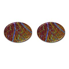 Neurobiology Cufflinks (oval) by BangZart