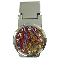 Neurobiology Money Clip Watches by BangZart