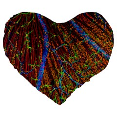 Neurobiology Large 19  Premium Heart Shape Cushions by BangZart