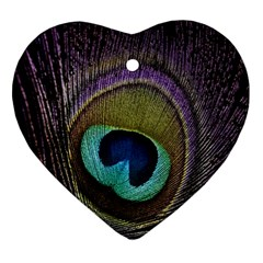 Peacock Feather Ornament (heart) by BangZart