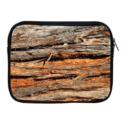 Natural Wood Texture Apple Ipad 2/3/4 Zipper Cases by BangZart