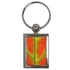 Nature Leaves Key Chains (rectangle)  by BangZart