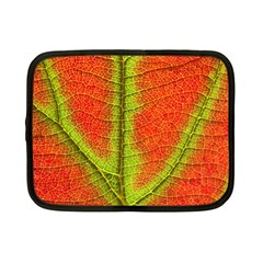 Nature Leaves Netbook Case (small)  by BangZart