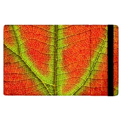 Nature Leaves Apple Ipad 3/4 Flip Case by BangZart