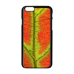 Nature Leaves Apple Iphone 6/6s Black Enamel Case by BangZart