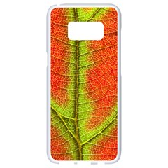 Nature Leaves Samsung Galaxy S8 White Seamless Case by BangZart