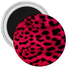 Leopard Skin 3  Magnets by BangZart