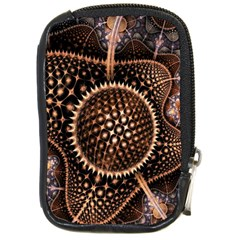 Brown Fractal Balls And Circles Compact Camera Cases by BangZart