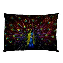 Beautiful Peacock Feather Pillow Case (two Sides) by BangZart