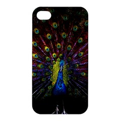 Beautiful Peacock Feather Apple Iphone 4/4s Hardshell Case by BangZart