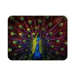 Beautiful Peacock Feather Double Sided Flano Blanket (mini)  by BangZart