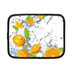 Fruits Water Vegetables Food Netbook Case (small)  by BangZart